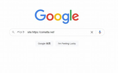 Google検索画面(サイト内検索)